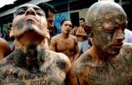 «Mara Salvatrucha» un gang proche de la mafia Mexicaine